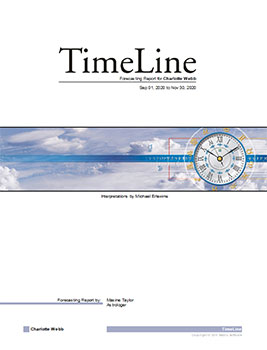 TimeLine Forecasting Report Sample